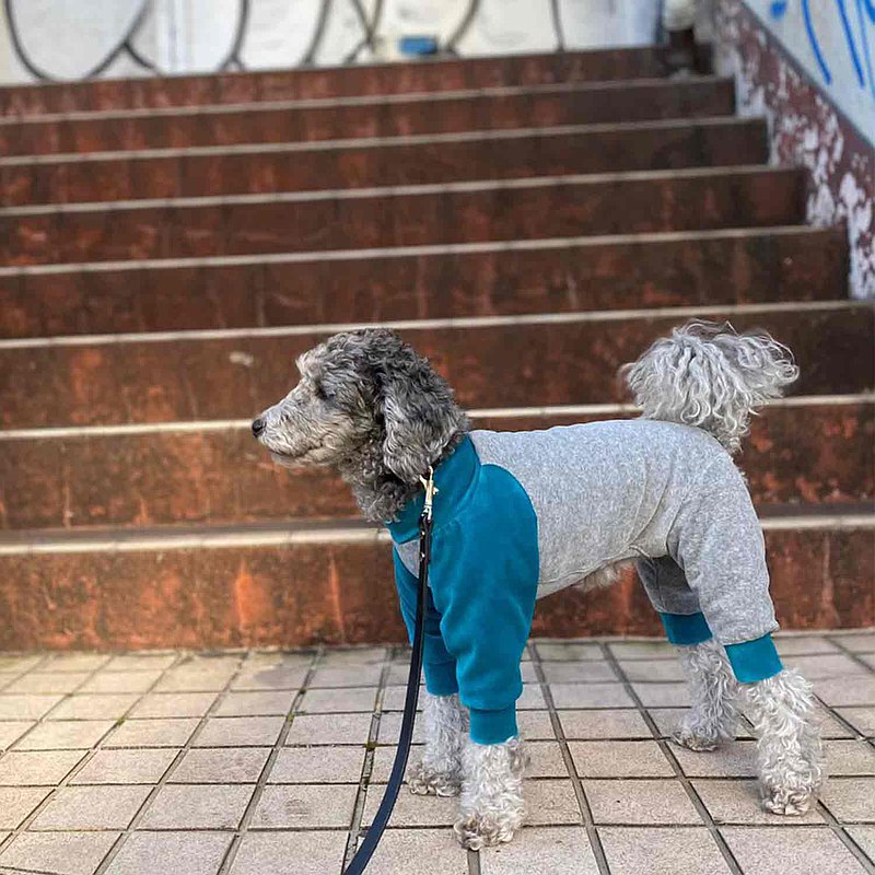 [HAINU] BICOLOR棉連身褲-灰色/藍色