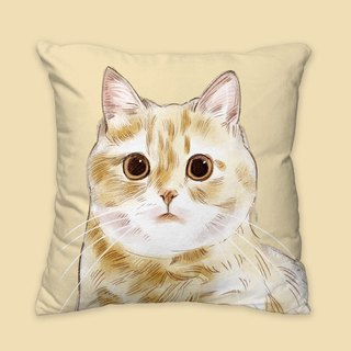 [I will love you forever] Classic fat orange pillow animal pillow / pillow / cushion