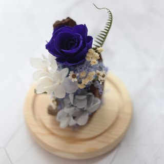 Not withered flowers 满 / Gypsophila bouquet / G113 / Chinese Valentine's Day / dry flower bouquet / Valentine's Day gift /