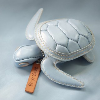 ONE+ Signature Limited Turtle Coin Purse Jewelry Bag Ocean Columbia Blue Turtle Bag