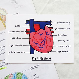 "Lifelong Learning series: ""I speak from my heart"" Postcard"