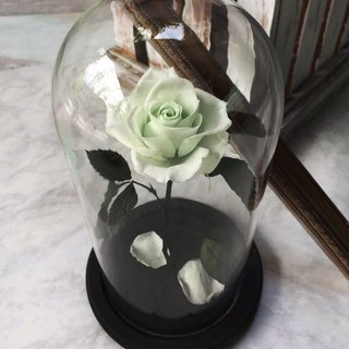 Christmas 2017 (now fold 100) Eternal flowers, not withered flowers (Tiffany green) impression FloralDesign exclusive production
