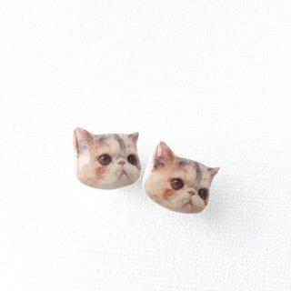 Exotic Cat Baby Jojo 925 silver stud earrings
