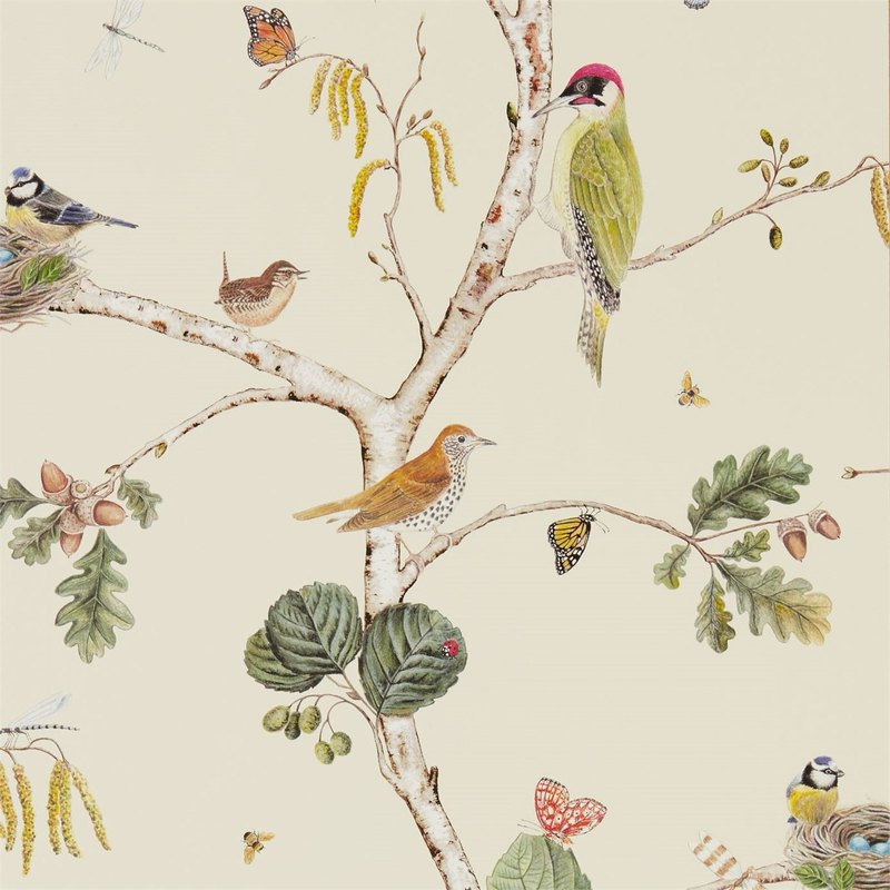 Sanderson Home_Woodland Walk _Woodland Chorus Woodland Choir Wallpaper