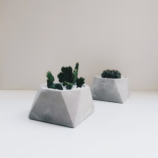 KOH-I-NOOR Rounded concrete planter / pot for Succulent & Cacti