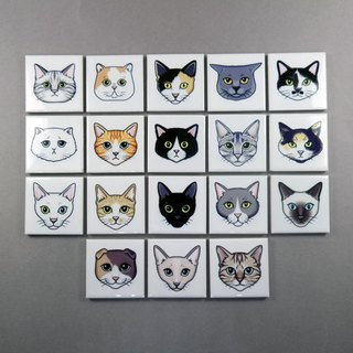 Cat Faces Magnets Cute Fridge Memo Holders (Set of 6)