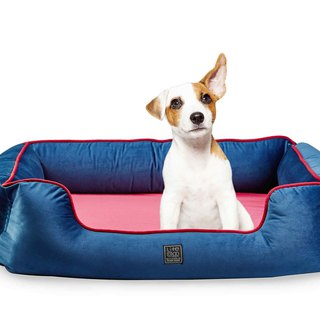 Lifeapp pet luxury sleeping pad _ Monto / Navy / M whole group can be washable