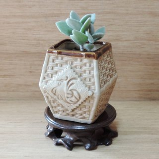 Zen Feng Xiao Pin ‧ succulent plants [with base]
