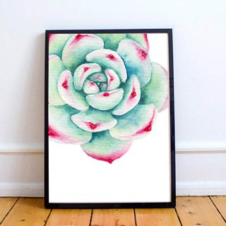 Succulent Watercolor Art Print. Echeveria Chihuahuaensis Rosette Botany Wall Art