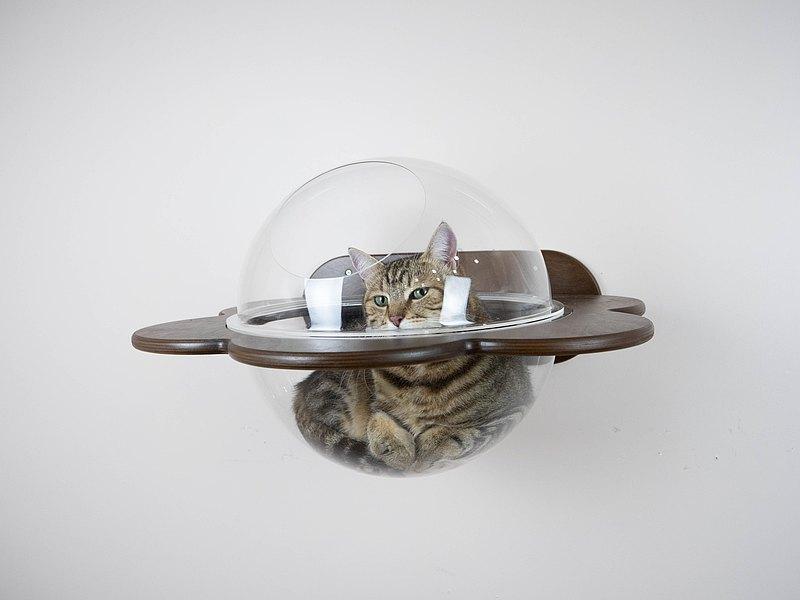 貓窗戶床極簡主義室內架子舒適的貓床