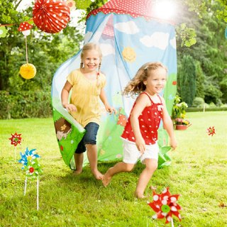 [Free shipping] Germany Spiegelburg garden frog children's game account (original price 2500 yuan in the current offer)