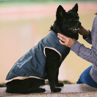 Tencel capless pet thermal vest - gray