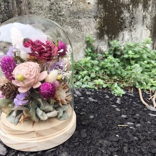 [good flower] sun rose micro landscape glass flowerbed dry flower ceremony Valentine's Day flower ceremony