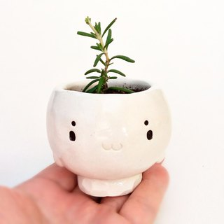white seal plant pot 1  Ceramics cactus pot Japan