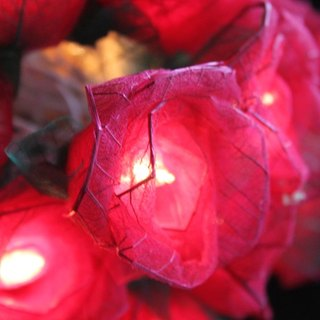 35 Romance Red Rose String lights for Patio,Wedding,Party and Decoration