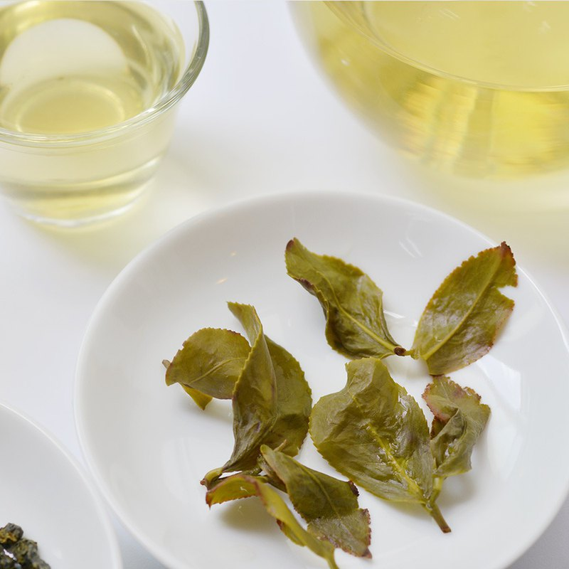 四季春冬片茶-2021限量!台灣南投高品質鮮採冬茶