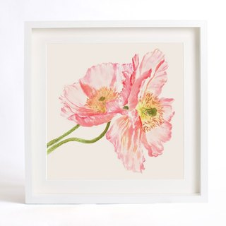 "Flower Art Print of Original Watercolor Painting, ""Silent as Enigma"" Serie-Pink Corn Poppy -Stay with You"