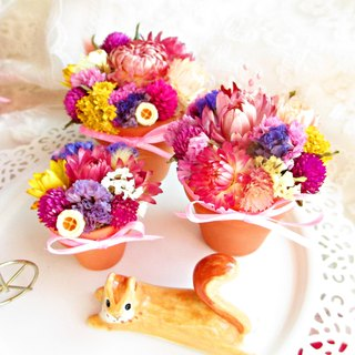 ❤ ❤ [obsessed] small flower dried flowers (mini models - high pot diameter 5.5cm * 5.5cm) wedding was a small birthday gifts wedding ceremony arranged bride Exploration Room