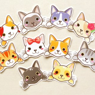 Cat Stickers [10 Pieces] - Waterproof Stickers