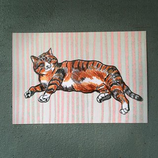 Lying tigers cat postcards