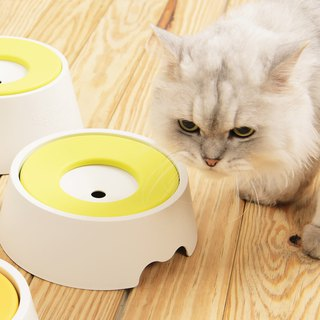 Antibacterial 98.7% bowl with only clean water / basic model 600ml (1~5kg cat and dog suitable)