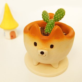 "The small cactus-pot of Shiba Inu shape ""No glaze"" Shiba Inu Kobo Shiro Japan"
