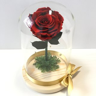 Not withered flowers, large glass cover, flower, small prince, beauty, and beast, similar to red and black
