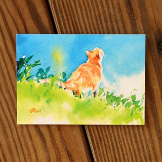 Watercolor painted hair boy series postcard - green slope look up