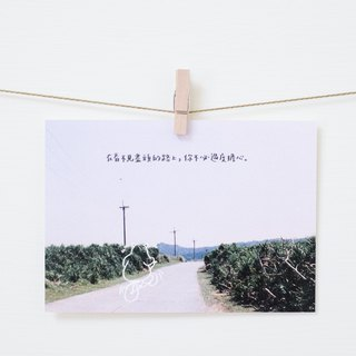 Invisible road / bear infested postcard / bear innocence の leaf book
