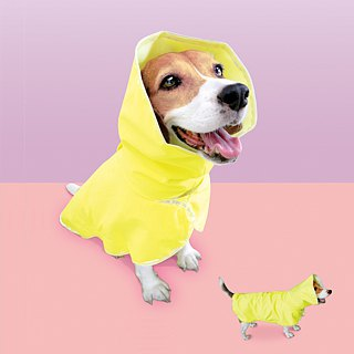 Pets Windbreaker Raincoat (M) dedicated bitches back about 42cm