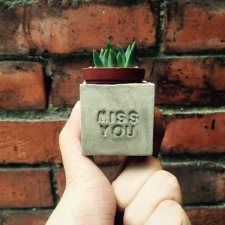 Miss you miss you ~! Magnet potted succulents