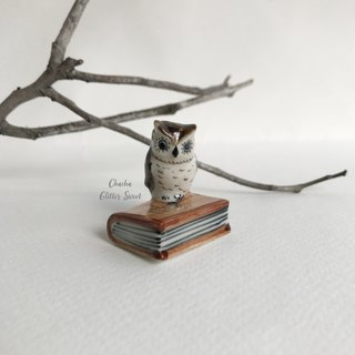 Owl tiny book