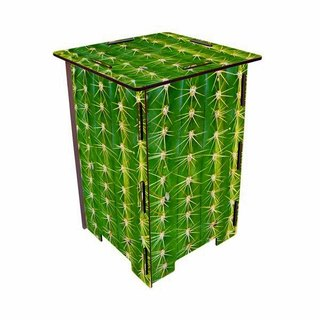 [Free Shipping] Germany Werkhaus color printing classic wooden stool with storage box - cactus