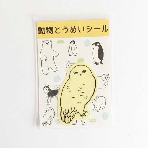 Animal Famous Seal 【White Owl】