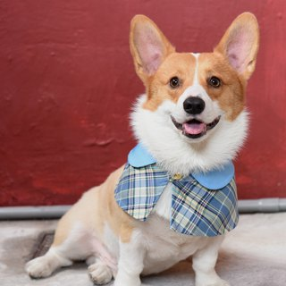 Handmade Tartan/Plaid Pet British Cape - Sky Blue - Dog/Cat/Rabbit【ZAZAZOO】