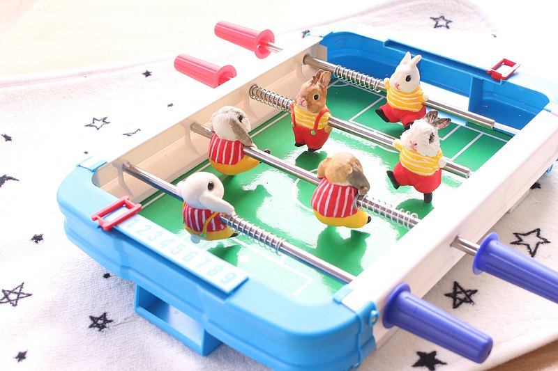 Tutu Foosball Table (Can be played against each other) Customized pet doll