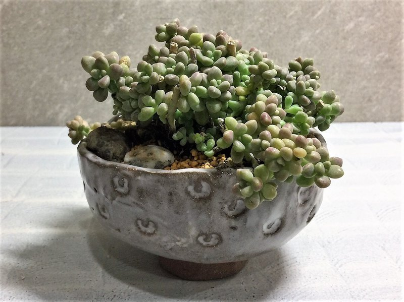 Simple embossed hand-bowl Bowl multi-pot pottery potted flower
