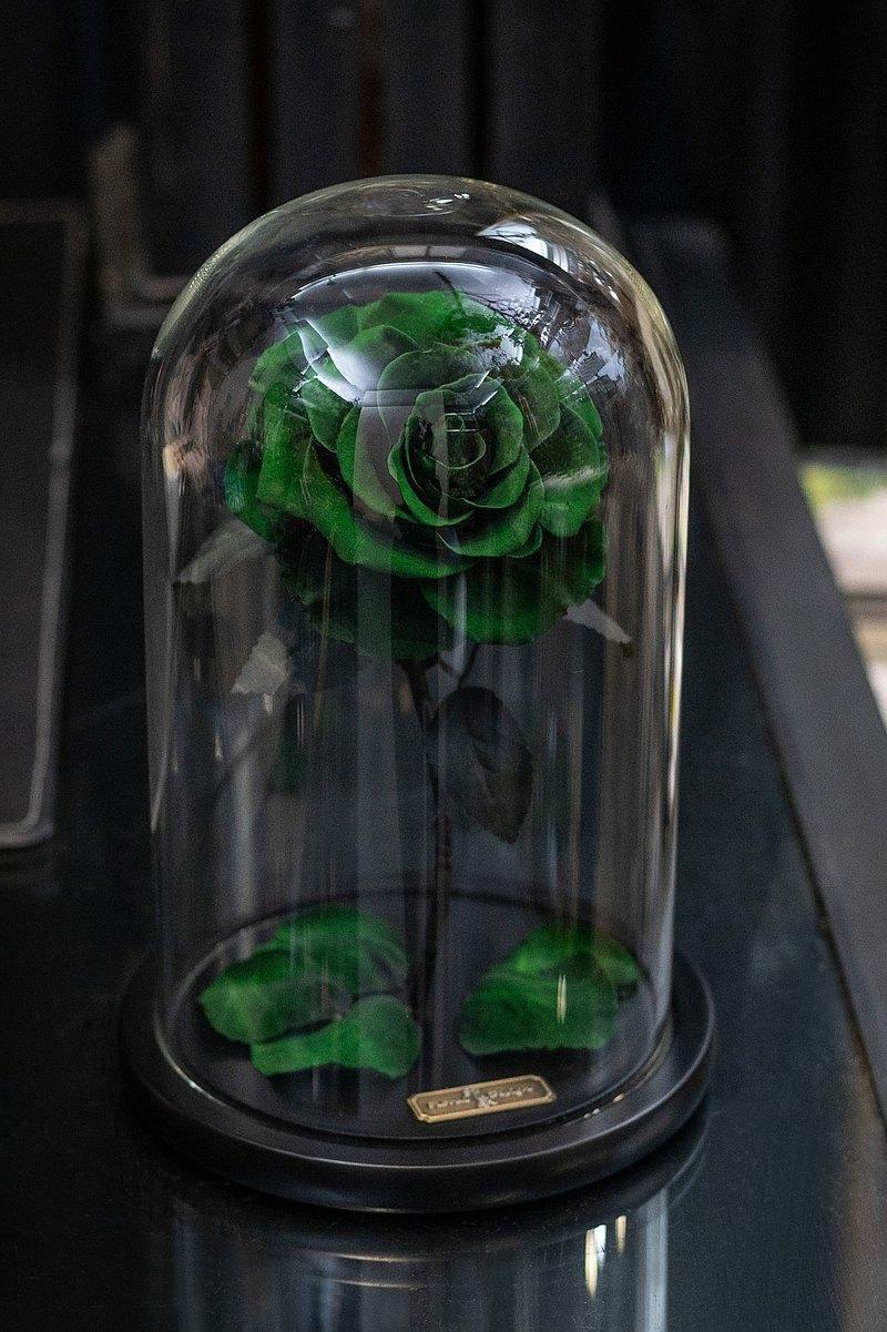 玫瑰 母親節 情人節 永生不凋花 經典不敗玫瑰 美女野獸 綠玫瑰