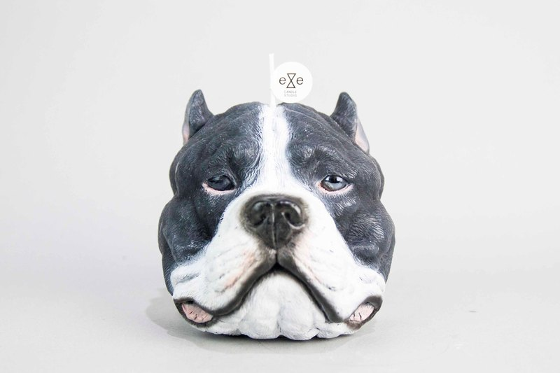 Staffordshire Bull Terrier (pit bull) candle - Gray and White