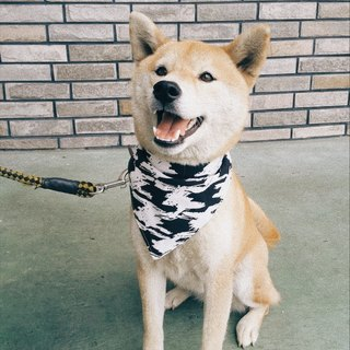 Dog handsome cotton scarf triangle scarf black and white impression style wind drape length can be changed according to volume leather piece + Taiwan cloth birthday gift dog
