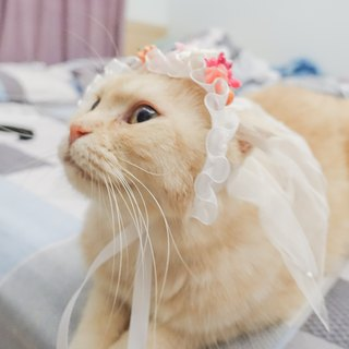 Pet hat romantic wedding veil