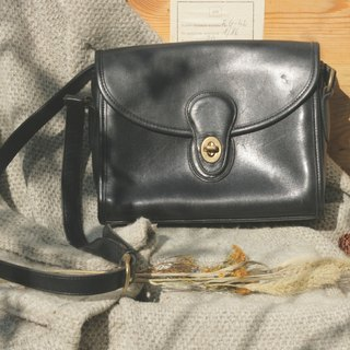 Leather bag _B012