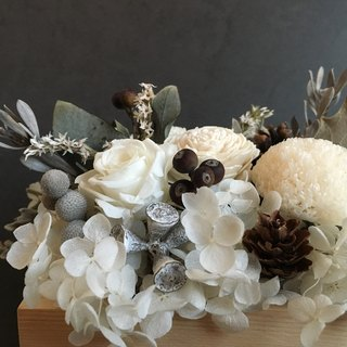 Health and summer flowers | white winter flowers / Christmas pots ‧ table flowers - Blanc - immortalized flowers /