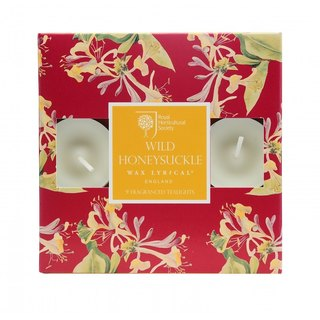 British Candle RHS FG Wild Honeysuckle Mini Candle 9 In