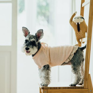 [Tail and me] pet clothes bow sweater pink orange