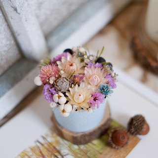 To be continued | purple cake flower dried flower small potted flower wedding small gifts gifts home decoration photography props office healing small Christmas gift exchange spot