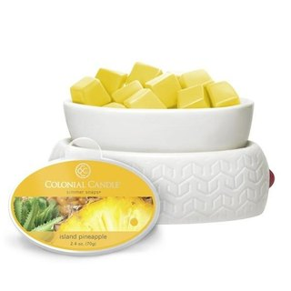 [VIVAWANG] 2.4oz Fragrance Wax (South Sea Pineapple)