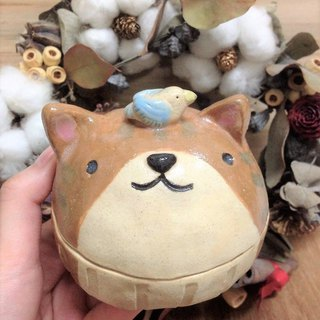 Hide and Seek Kitty Treasure Box