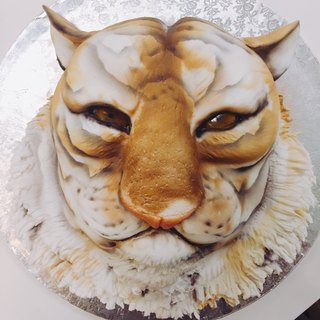 Tiger tiger style turned sugar cake