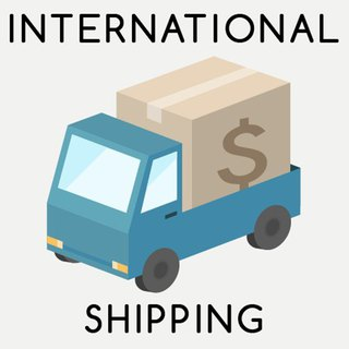 追加送料 - International Free Shipping Upgrade to Register Mail